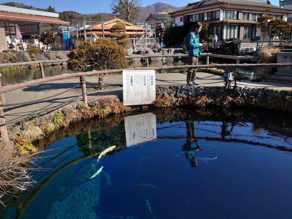 忍野八海は富士山の雪解け水が湧く8つの神秘的な池のパワースポット!